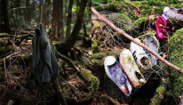 Khu rừng tự sát Aokigahara và những câu chuyện rùng rợn - Ảnh 4.