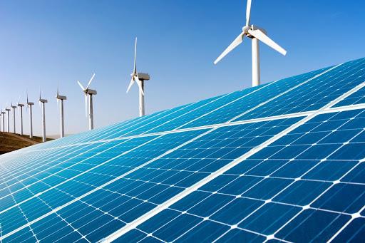 Bình Thuận xin chuyển mục đích sử dụng rừng làm nhà máy điện gió Hòa Thắng, Bộ NNPTNT nói chưa đủ điều kiện - Ảnh 1.