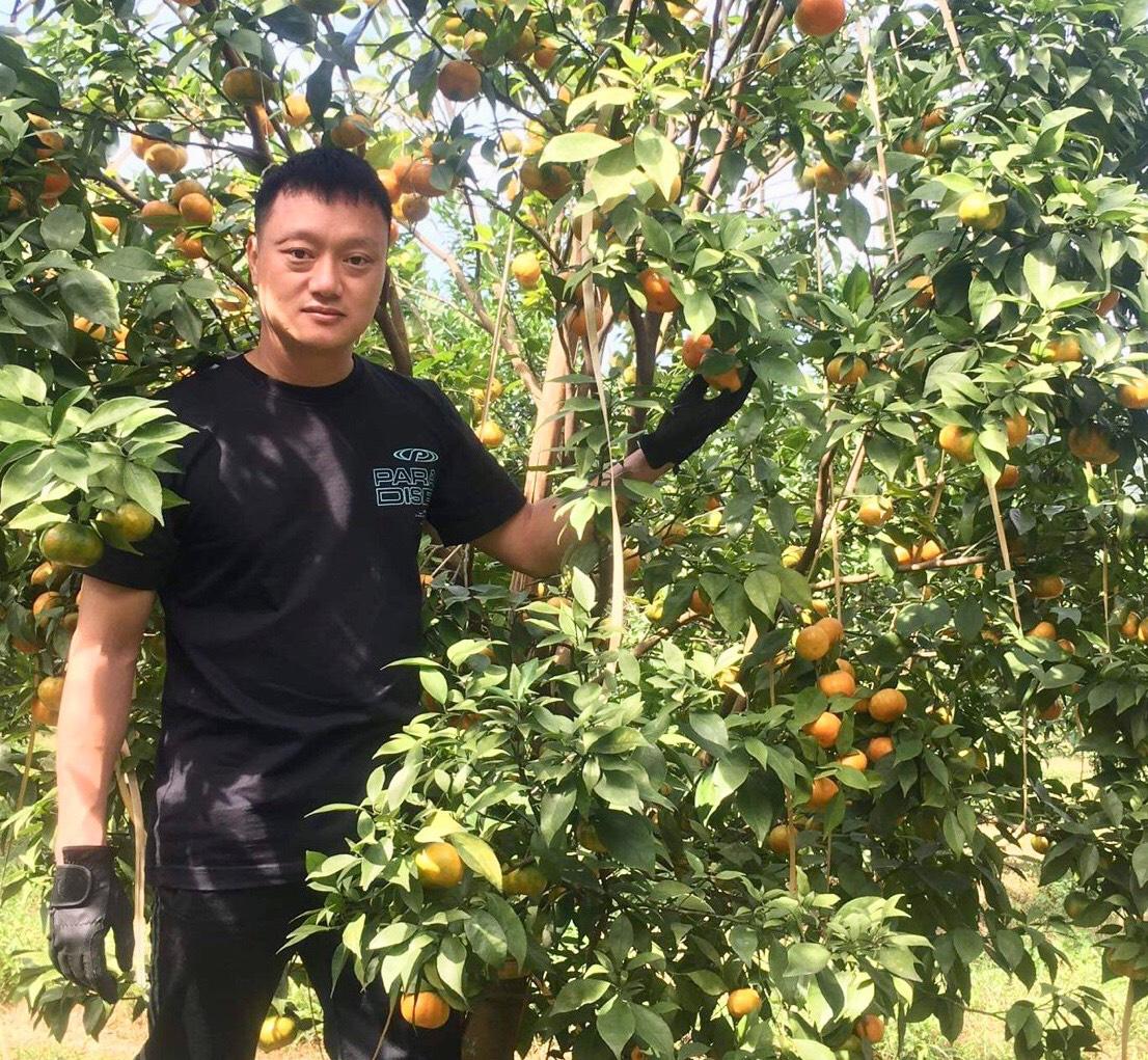 Thanh Hóa: Bỏ phố lên núi trồng 30.000 gốc cam, bưởi…thu 2 tỷ/năm - Ảnh 8.