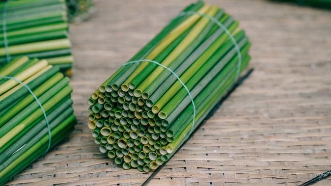 Biến cỏ dại thành ống hút xuất khẩu doanh thu trăm tỷ - Ảnh 1.