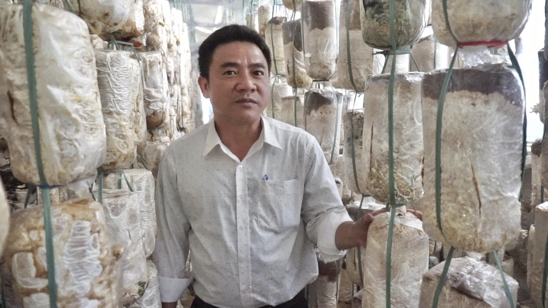 Đà Nẵng: Kỹ sư 8X bỏ phố lên núi nuôi thỏ, trồng nấm vươn lên làm giàu - Ảnh 3.