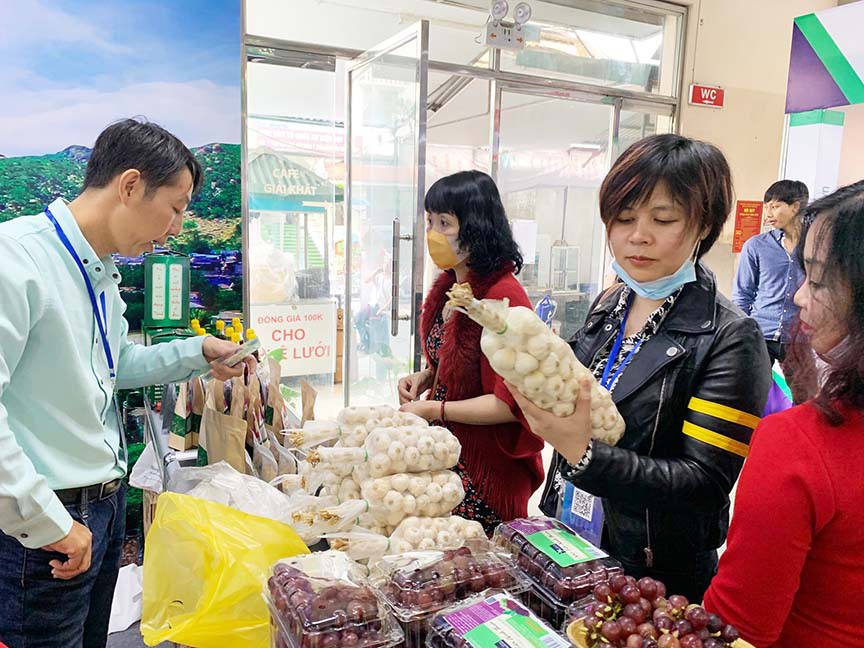 Khai mạc Hội chợ Du lịch Quốc tế Việt Nam – VITM Hà Nội 2020  - Ảnh 3.