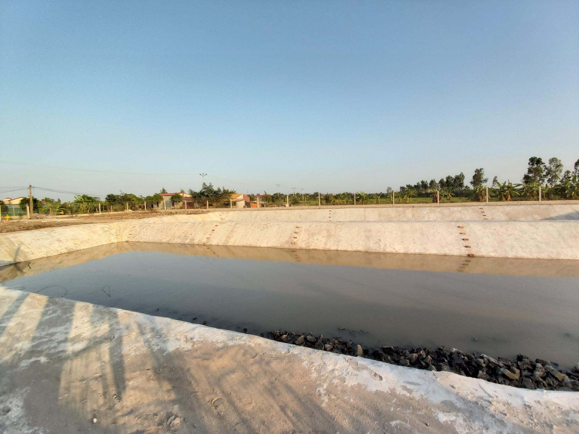 Hà Nội: Cho ba ba gai sống chung với cá chuối hoa, ông nông dân này nuôi nhàn tênh, bán giá nửa triệu đồng/kg - Ảnh 8.