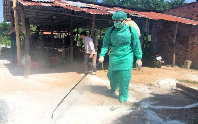 Cuối năm, dịch bệnh vẫn thách thức ngành chăn nuôi - Ảnh 1.
