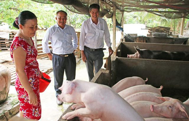 Cuối năm, dịch bệnh vẫn thách thức ngành chăn nuôi - Ảnh 3.