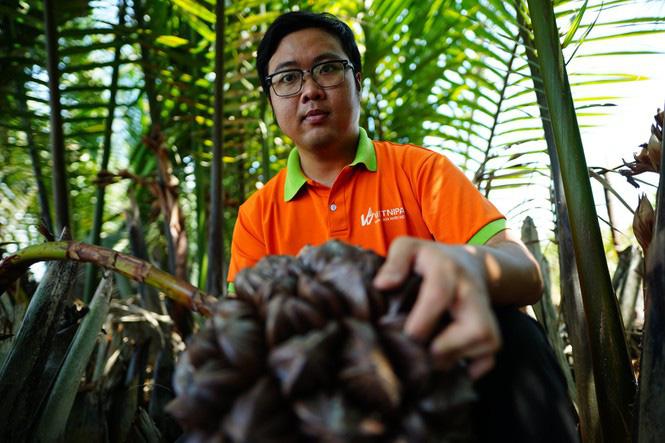 Có một không hai ở Việt Nam: Anh kỹ sư hot boy bắt cây dừa nước tiết ra mật - Ảnh 3.