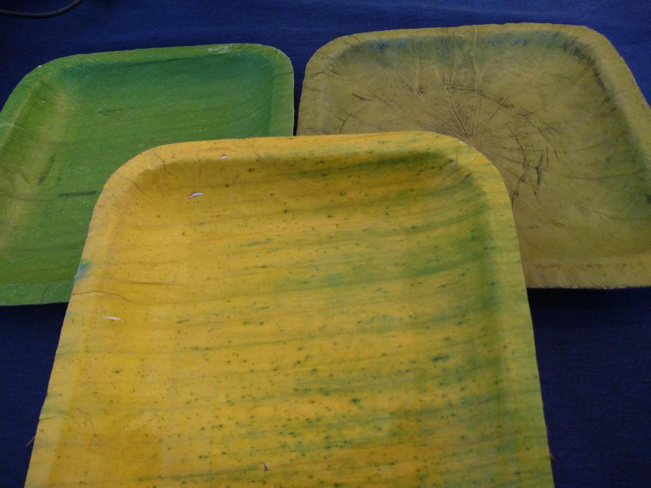 Làm chén, đĩa từ chuối, dùng thoải mái, 45 ngày tự phân hủy - Ảnh 2.