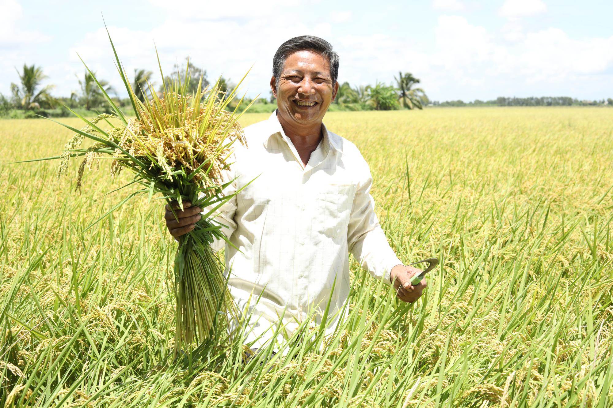 Hiệu quả bất ngờ của N46.Plus từ chia sẻ của người nông dân - Ảnh 3.