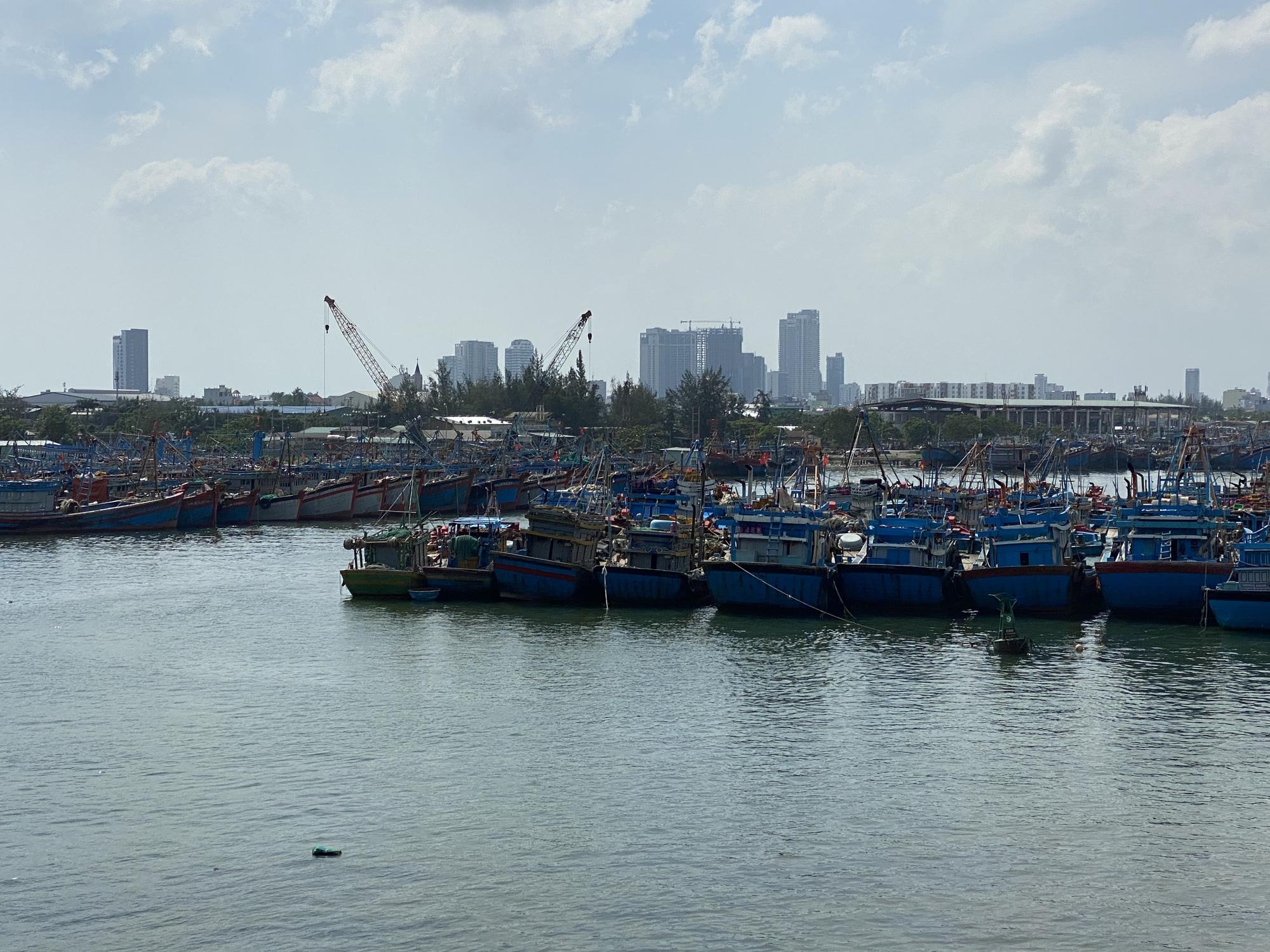 Đà Nẵng: Đường Việt Corp trúng liên tiếp 2 gói thầu xây lắp ở cảng cá Thọ Quang - Ảnh 1.