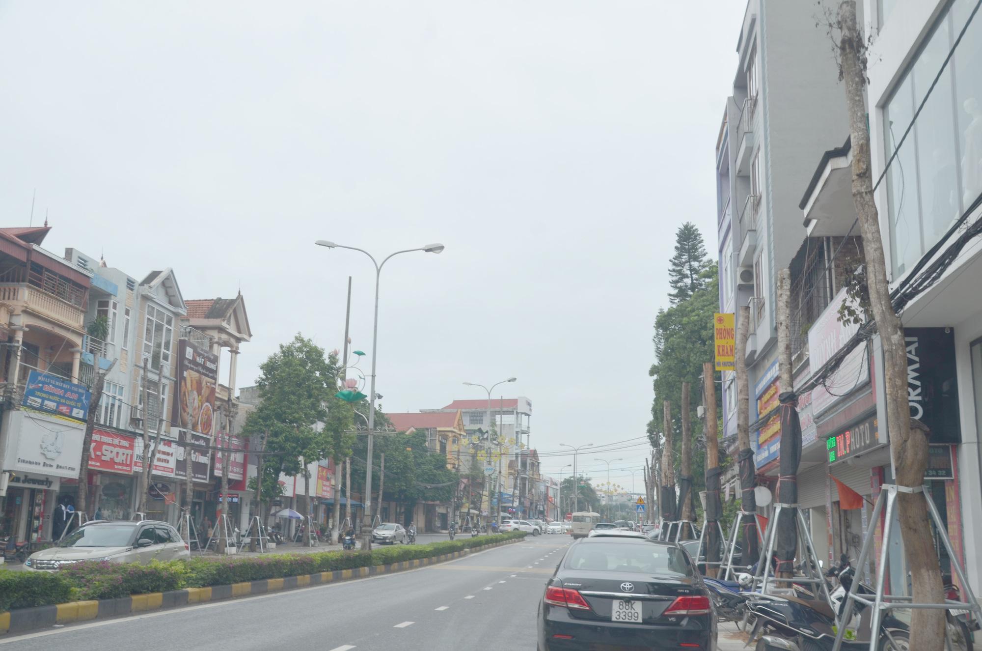 Vĩnh Phúc: La liệt cây xanh bị cụt ngọn, chết khô trên tuyến đường trung tâm thành phố - Ảnh 4.