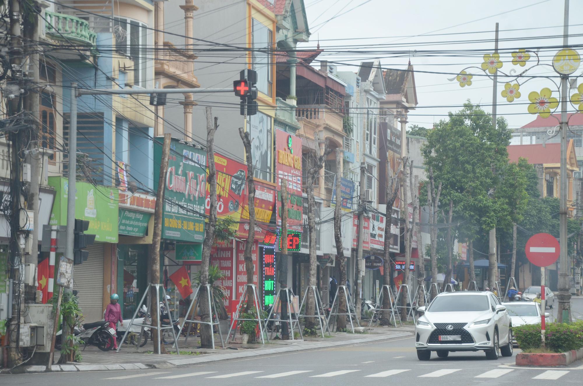 Vĩnh Phúc: La liệt cây xanh bị cụt ngọn, chết khô trên tuyến đường trung tâm thành phố - Ảnh 2.