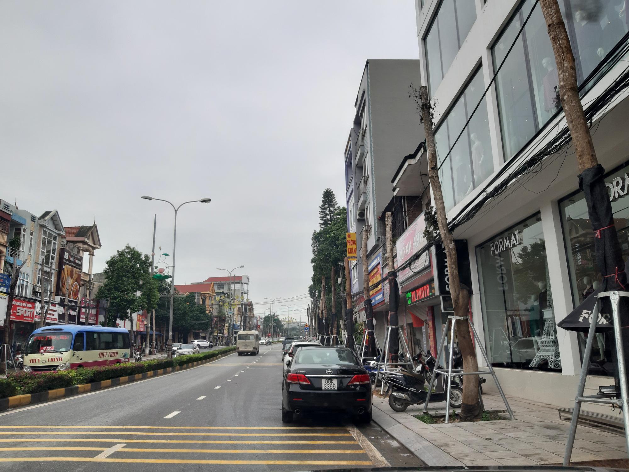 Vĩnh Phúc: La liệt cây xanh bị cụt ngọn, chết khô trên tuyến đường trung tâm thành phố - Ảnh 5.