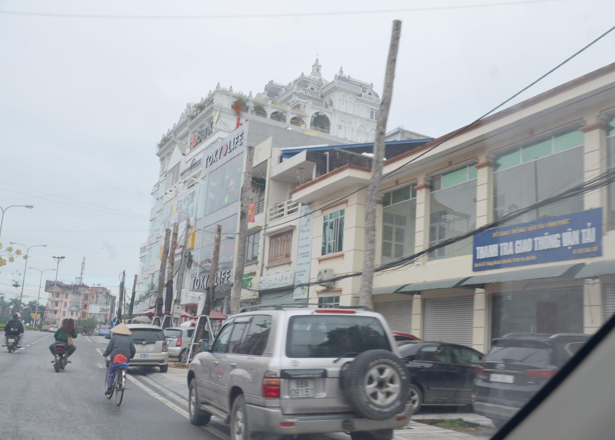 Vĩnh Phúc: La liệt cây xanh bị cụt ngọn, chết khô trên tuyến đường trung tâm thành phố - Ảnh 10.