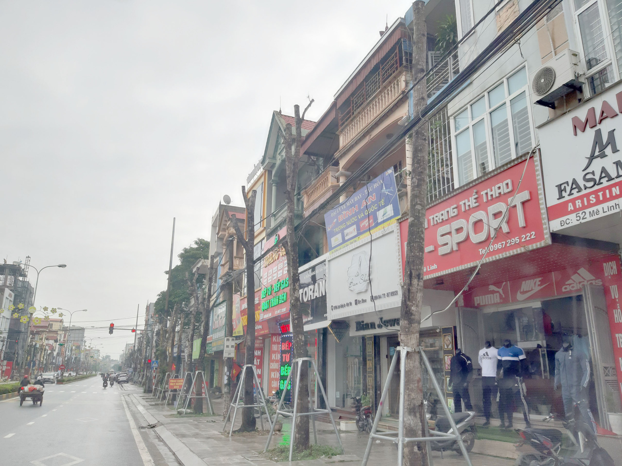Vĩnh Phúc: La liệt cây xanh bị cụt ngọn, chết khô trên tuyến đường trung tâm thành phố - Ảnh 11.