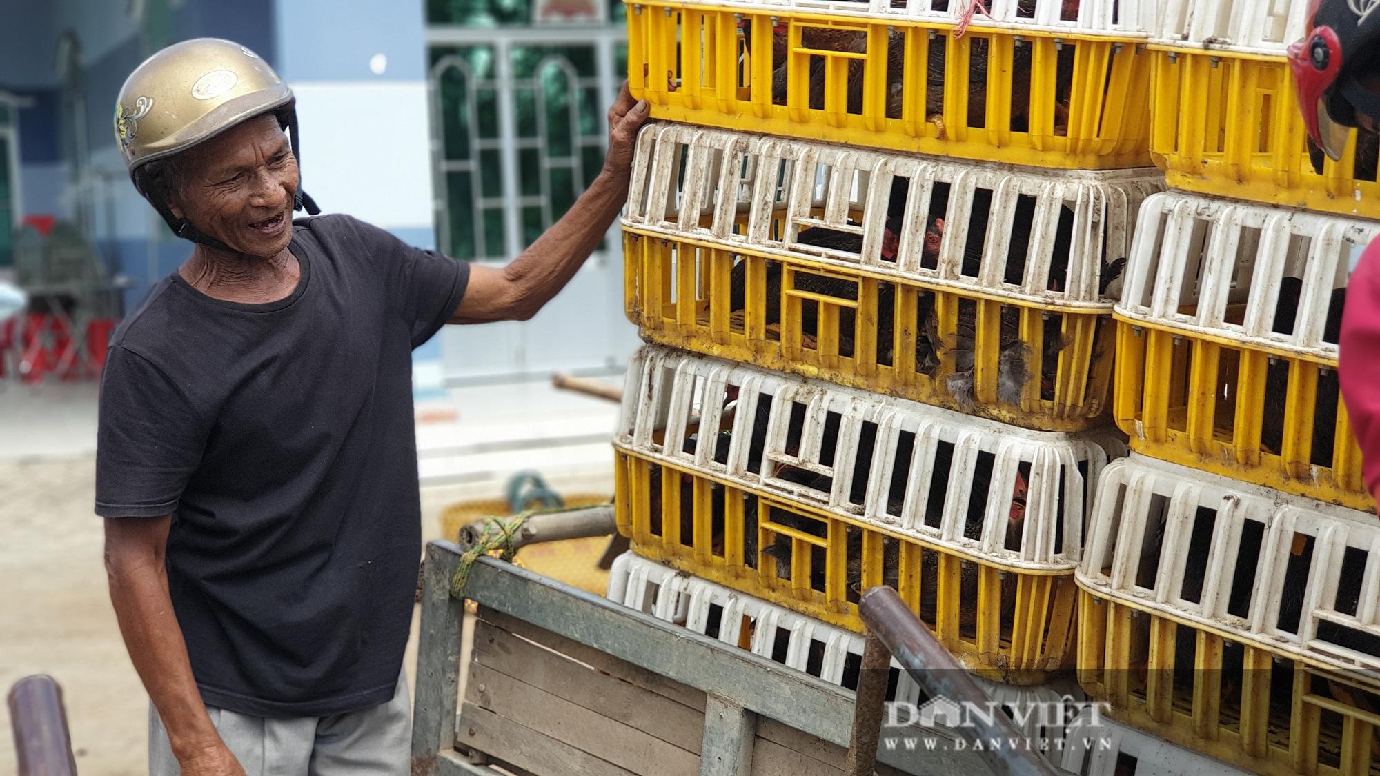 Trà Vinh: Người dân xã nghèo vui mừng đi nhận gà đẻ về nuôi miễn phí - Ảnh 5.