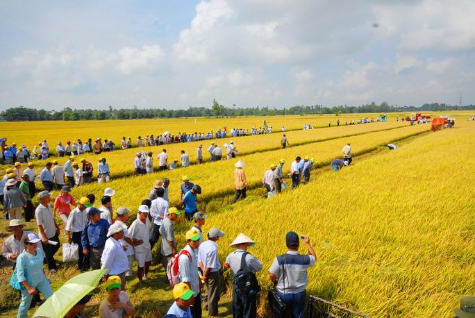 Khơi thông vốn cho nông nghiệp - Ảnh 1.
