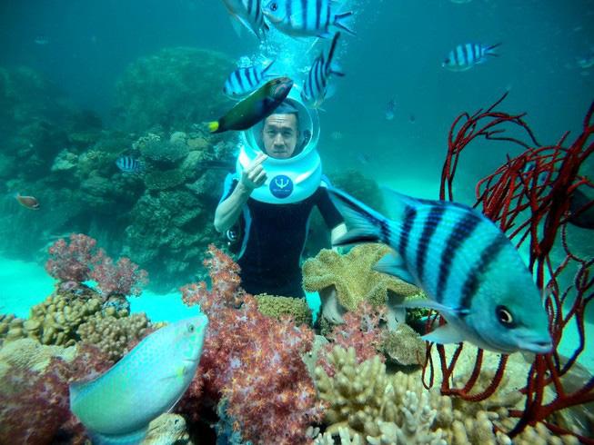 Đảo Ngọc – Phú Quốc thực hiện kích cầu du lịch với nhiều ưu đãi hứa hẹn hấp dẫn   - Ảnh 2.