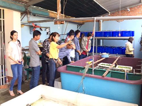 An Giang: Nuôi lươn đồng với công nghệ tuần hoàn nước, cán bộ kỹ thuật đã ham, nông dân lại càng mê - Ảnh 1.