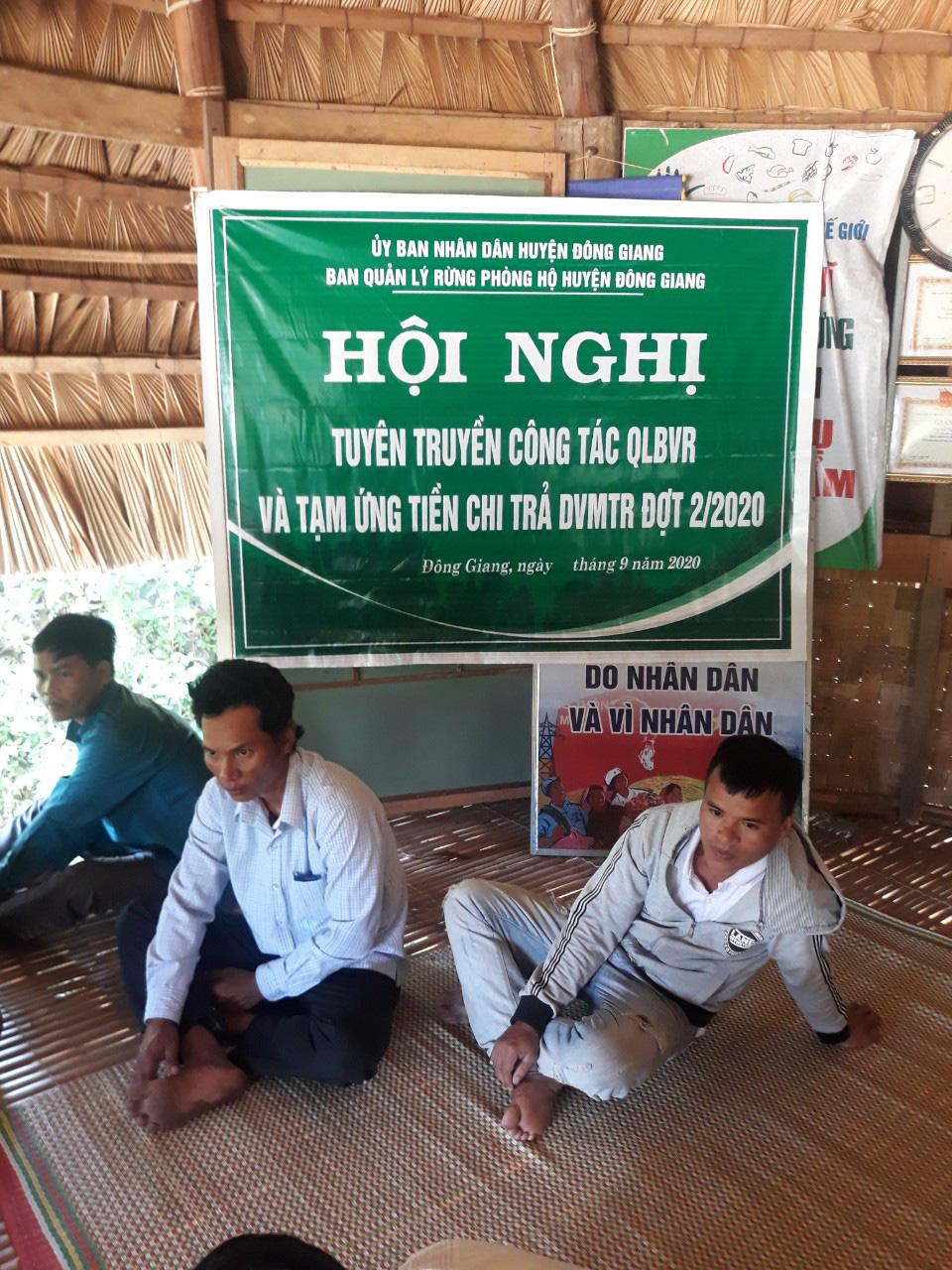 Quỹ Bảo vệ và phát triển rừng Quảng Nam - Vượt khó để hoàn thành nhiệm vụ - Ảnh 3.