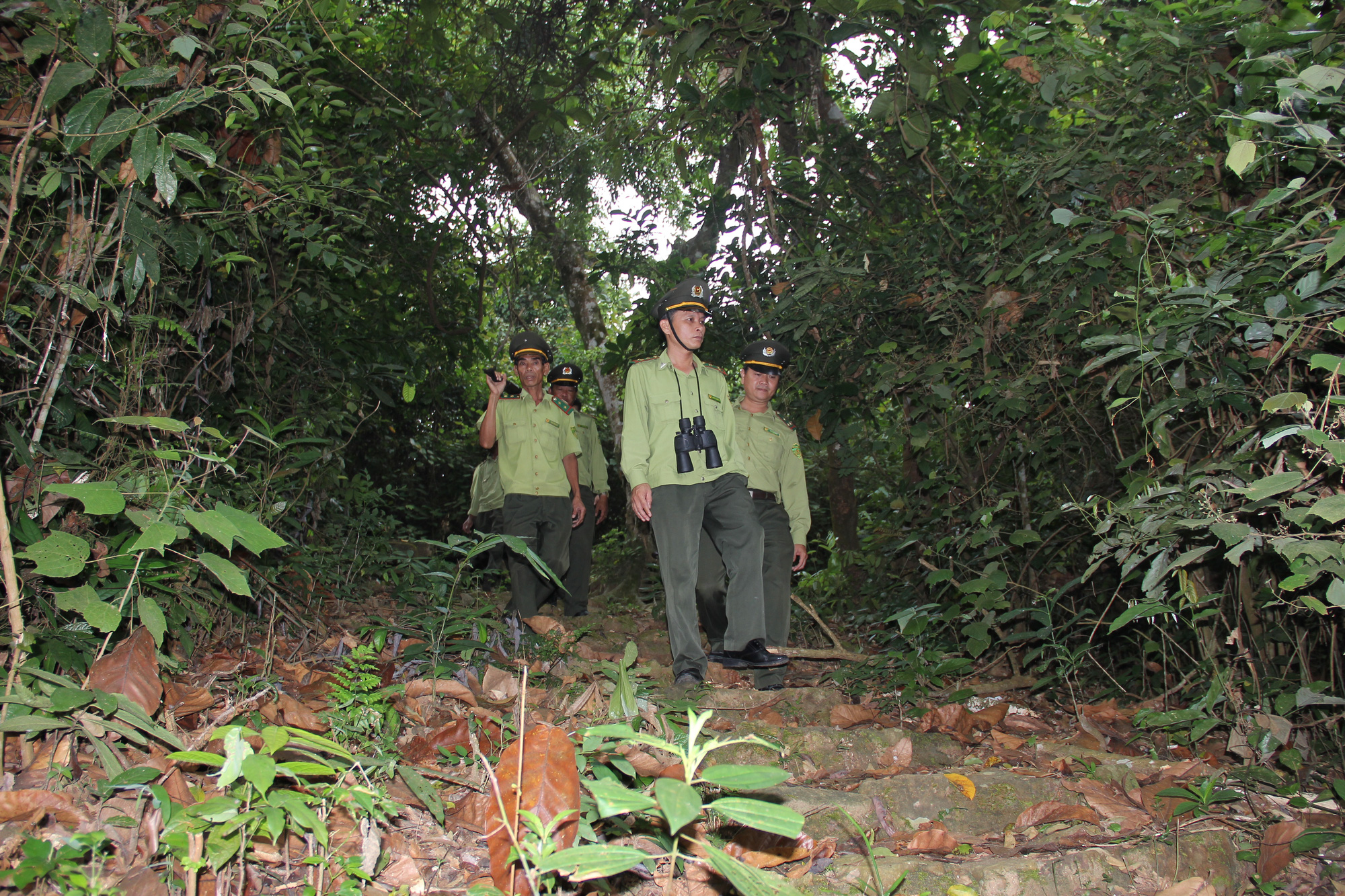 Quỹ Bảo vệ và phát triển rừng Quảng Nam - Vượt khó để hoàn thành nhiệm vụ - Ảnh 5.