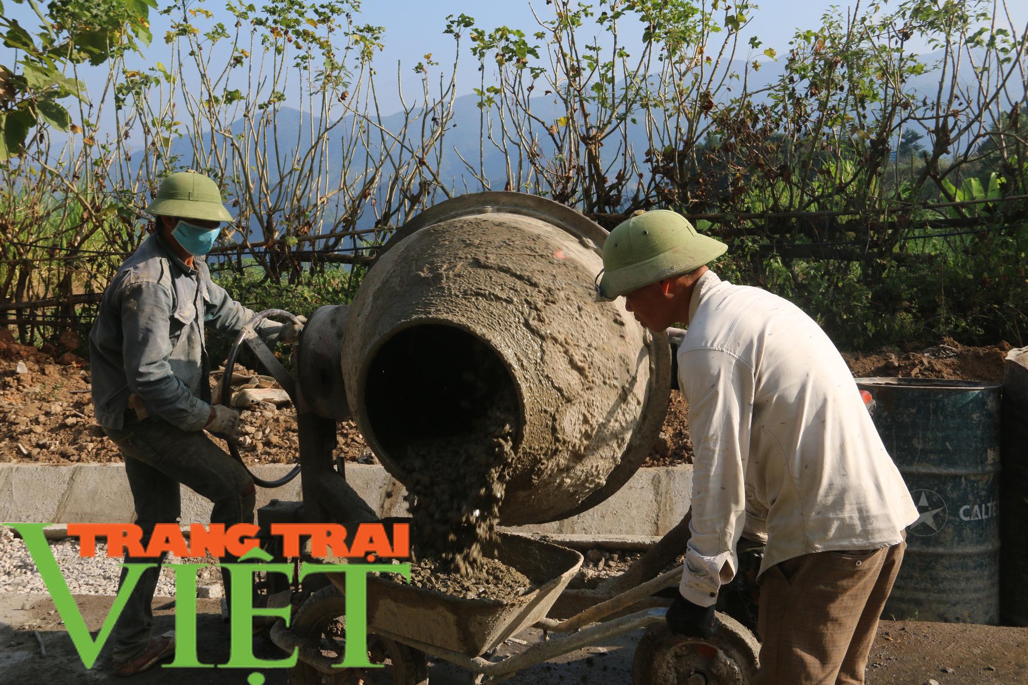 Người dân Quỳnh Nhai góp hàng nghìn ngày công, hiến đất xây dựng nông thôn mới - Ảnh 2.