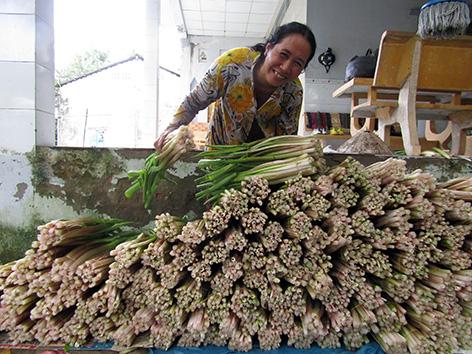 Hậu Giang: Thứ rau đồng mọc hoang trước vứt đi không xuể, nay nhặt về trồng dưới mương, hái được bó nào lái khuân sạch - Ảnh 1.