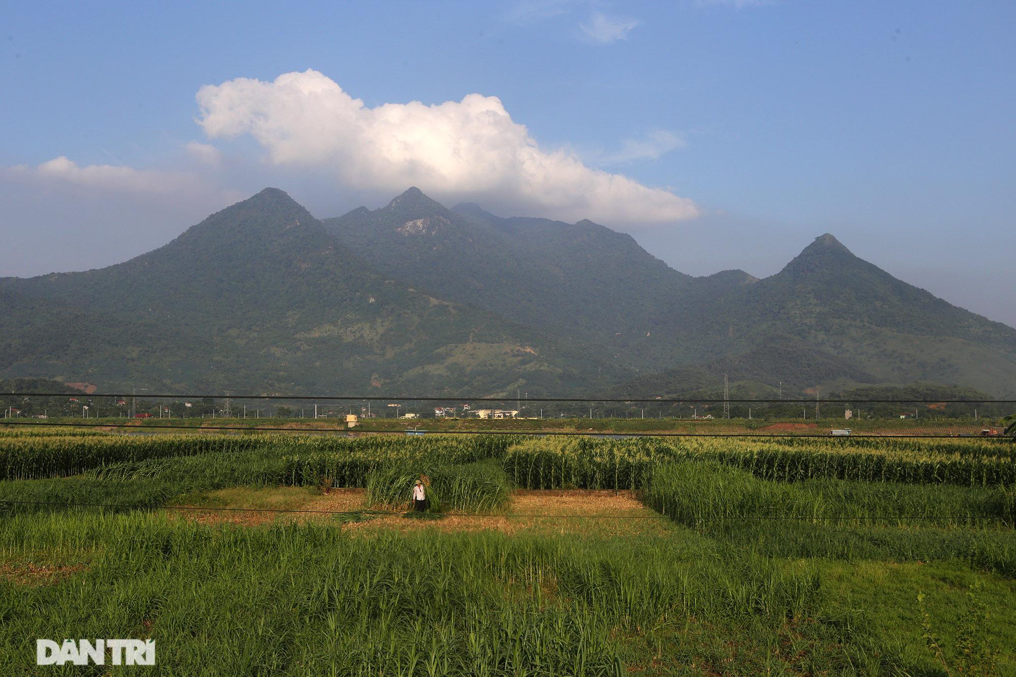 Núi thiêng gần Hà Nội đẹp mê mải nhìn từ muôn phương tám hướng - Ảnh 15.