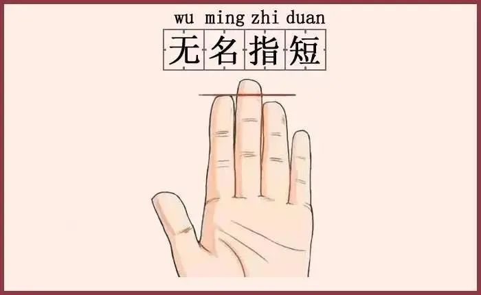 Ngón tay đeo nhẫn có đặc điểm này, tình duyên đỏ thắm, đôi lứa xứng đôi - Ảnh 3.