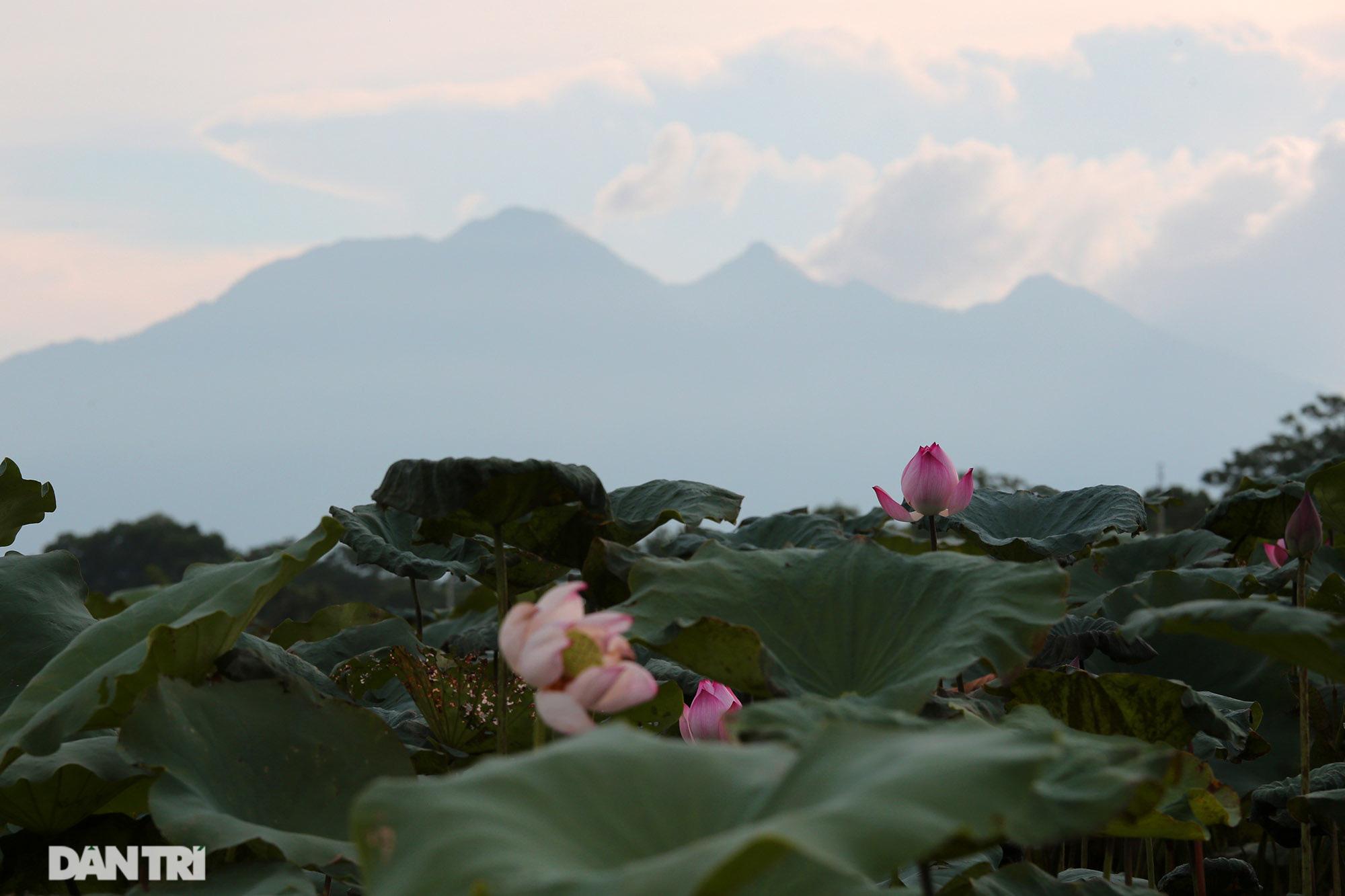 Núi thiêng gần Hà Nội đẹp mê mải nhìn từ muôn phương tám hướng - Ảnh 6.