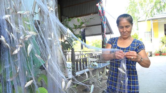 Đồng Tháp: Mùa cá ra sông, dân tấp nập thả lưới, có tay lưới cá dính chi chít phải mang về gỡ dần - Ảnh 1.