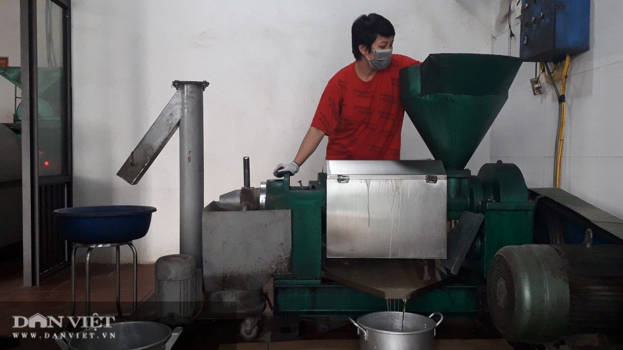 Thanh niên bỏ công việc nhiều người mơ ước về ép ra thứ nước béo ngậy nhà nhà đều dùng - Ảnh 8.