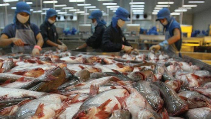Ông Nguyễn Phúc Thịnh muốn sở hữu gần 57 triệu cổ phiếu HVG, nâng tỉ lệ sở hữu lên 24,9%  - Ảnh 1.