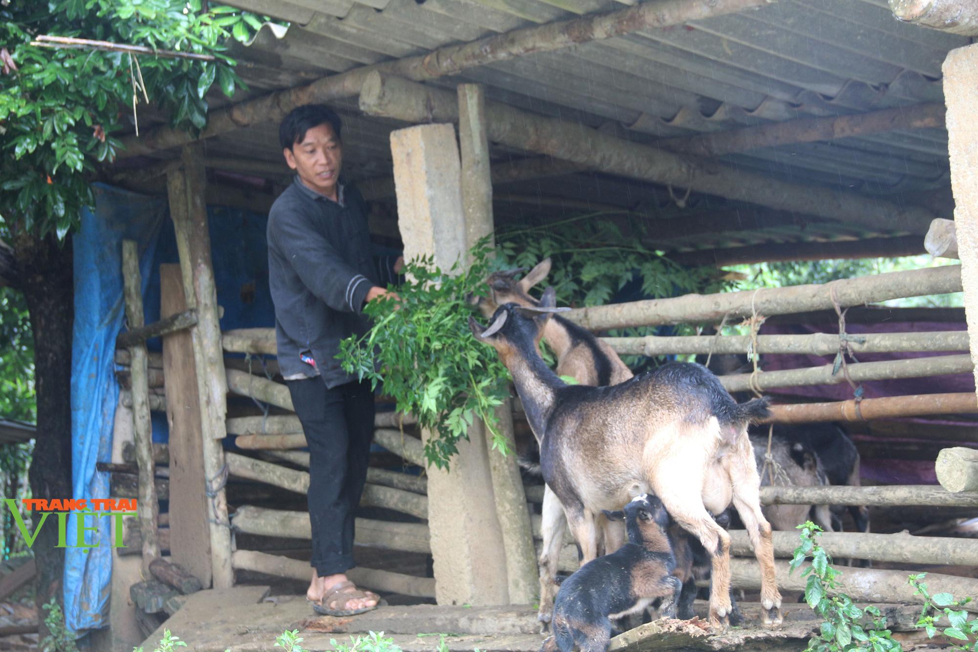 Lào Cai: Sức sống mới ở xã vùng cao Xuân Quang - Ảnh 2.