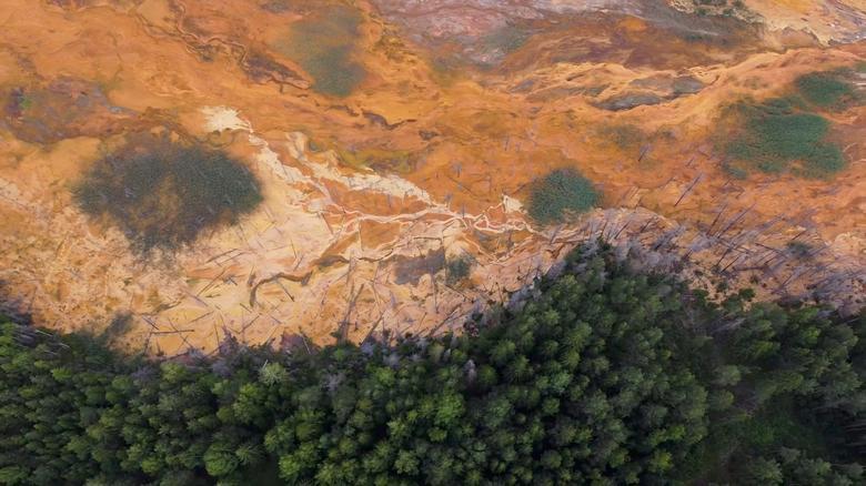Châu chấu bay phủ kín nhiều cánh đồng tại Châu Phi lọt top ảnh môi trường năm 2020 - Ảnh 13.
