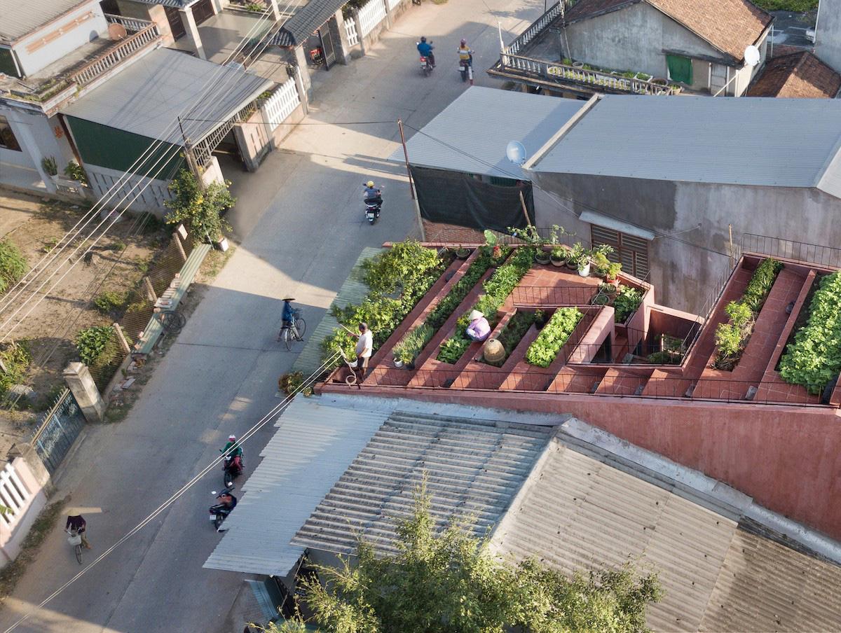 Ngôi nhà tại Việt Nam có 7 bậc thang trồng rau trên mái được quốc tế vinh danh - Ảnh 2.