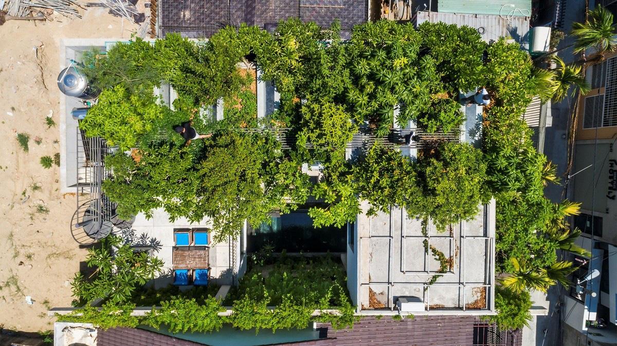 Ngôi nhà tại Việt Nam có 7 bậc thang trồng rau trên mái được quốc tế vinh danh - Ảnh 6.
