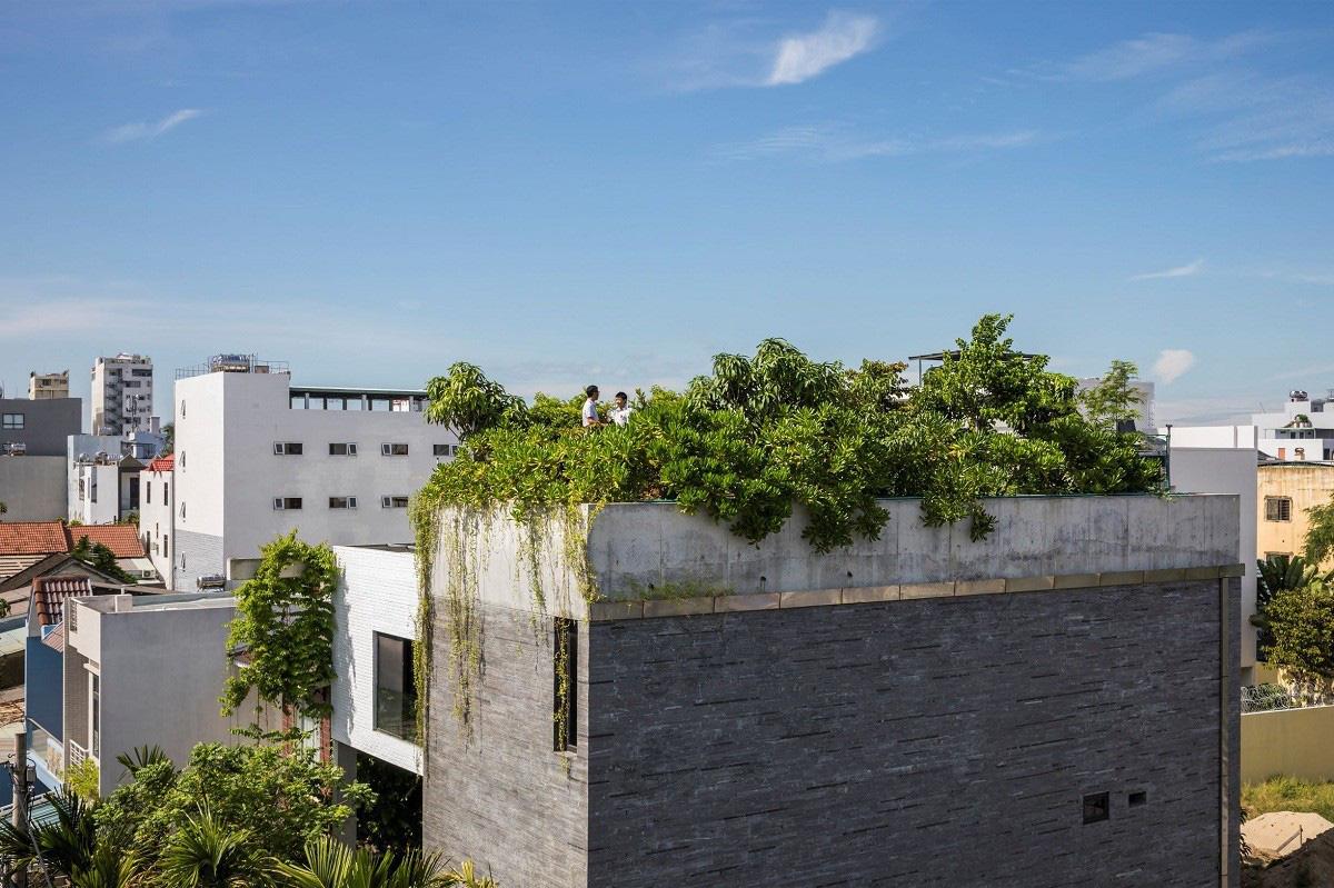 Ngôi nhà tại Việt Nam có 7 bậc thang trồng rau trên mái được quốc tế vinh danh - Ảnh 7.
