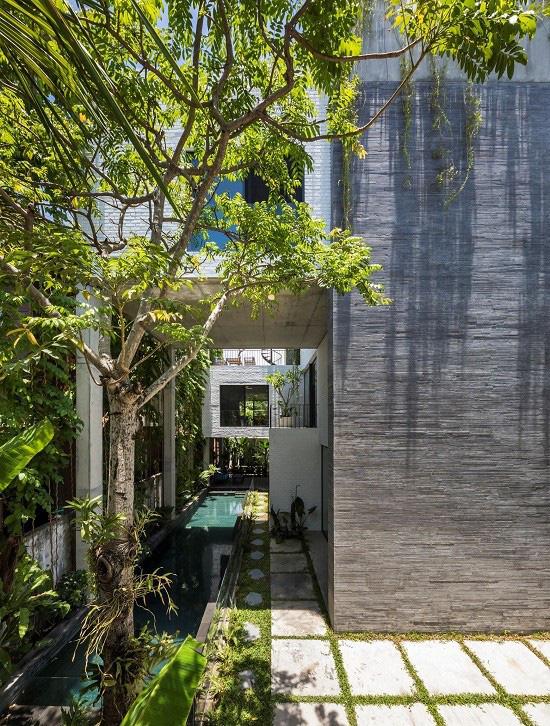 Ngôi nhà tại Việt Nam có 7 bậc thang trồng rau trên mái được quốc tế vinh danh - Ảnh 8.
