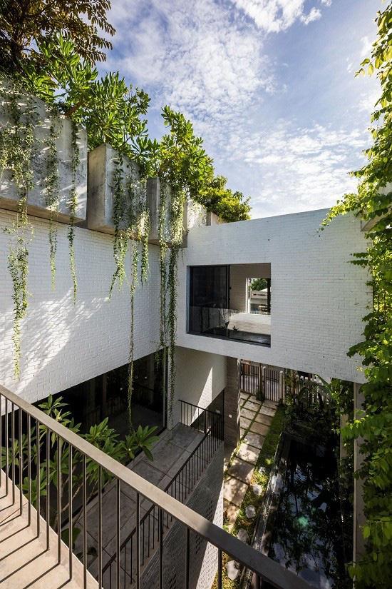 Ngôi nhà tại Việt Nam có 7 bậc thang trồng rau trên mái được quốc tế vinh danh - Ảnh 9.