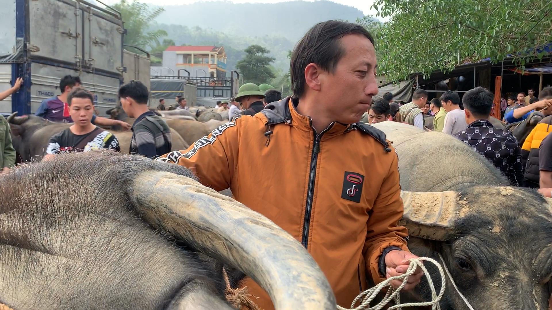 Bắc Kạn khó khăn trong công tác kiểm soát dịch bệnh tại chợ trâu, bò Nghiên Loan - Ảnh 6.