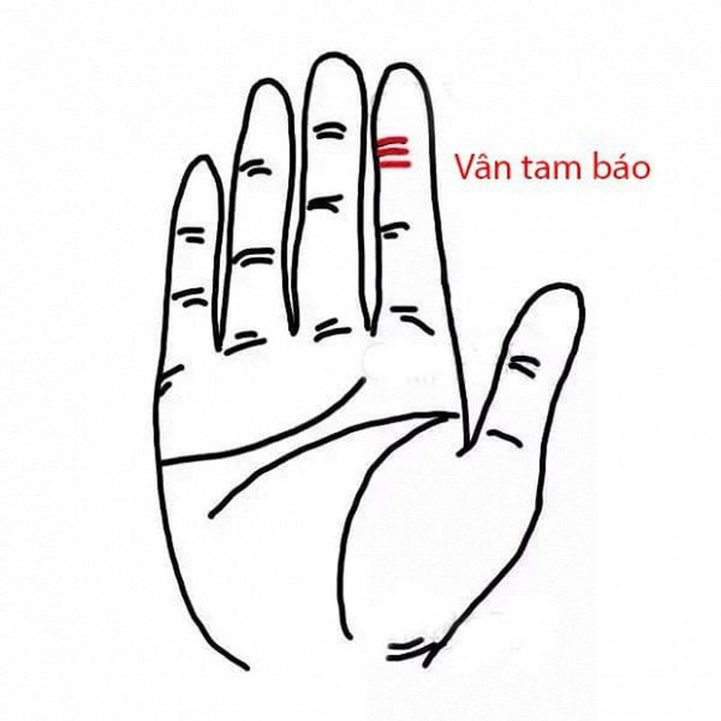 Phụ nữ sở hữu 4 kiểu vân tay này có số mệnh an nhàn, cuộc sống giàu sang, sung túc - Ảnh 4.