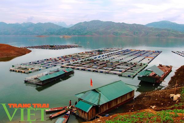 Nông dân Quỳnh Nhai khấm khá nhờ nghề nuôi cá lồng - Ảnh 2.