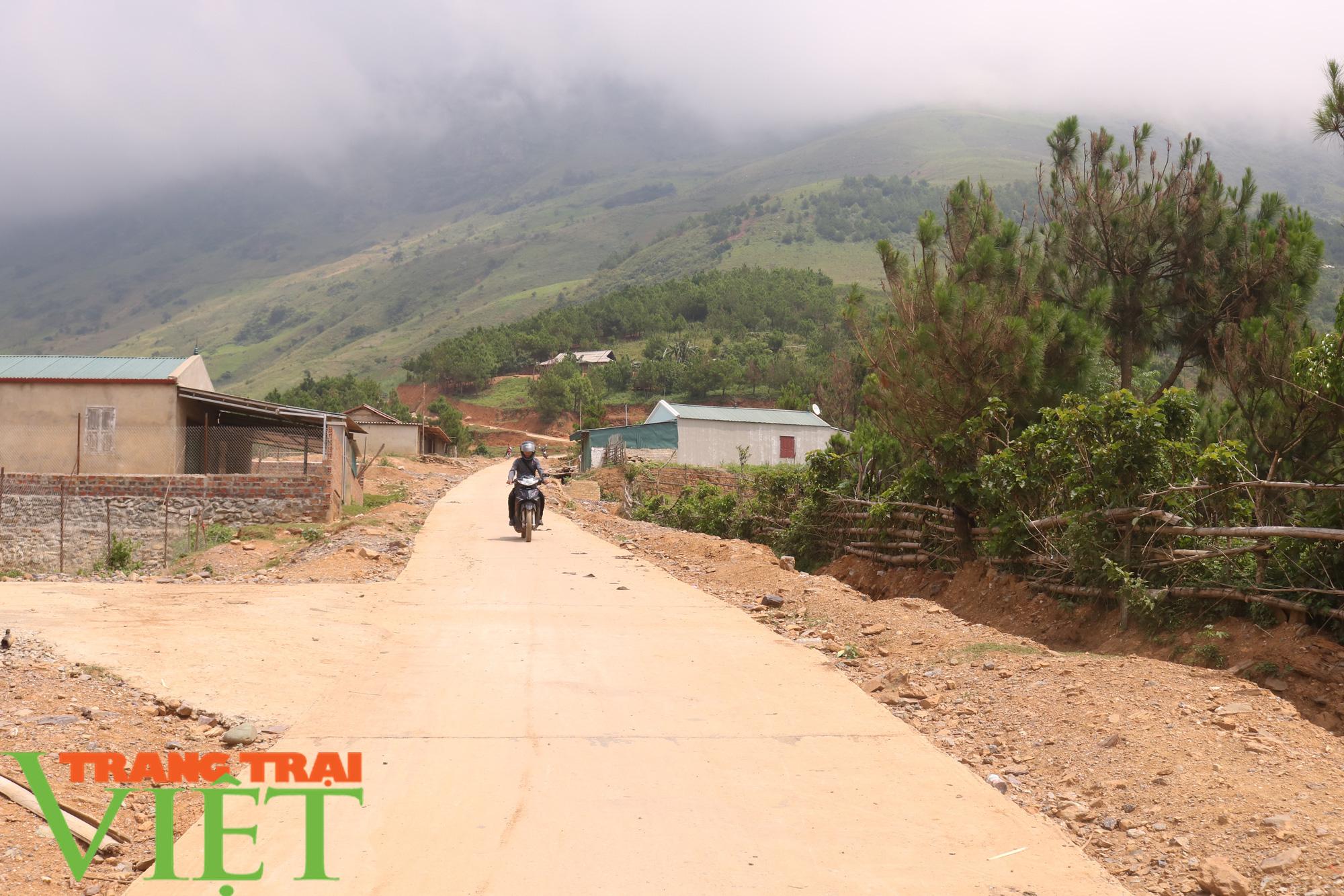 Phù Yên nỗ lực cứng hóa đường giao thông nông thôn - Ảnh 2.