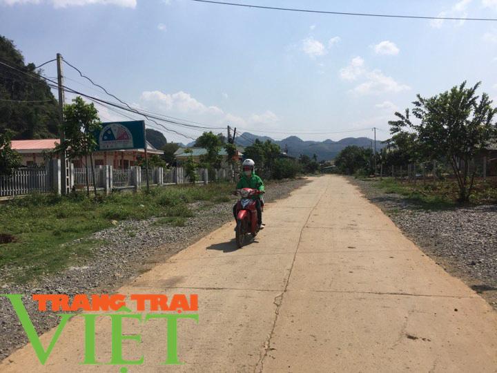 Hội Nông dân Mai Sơn: Huy động hội viên góp công, góp sức xây dựng nông thôn mới - Ảnh 3.