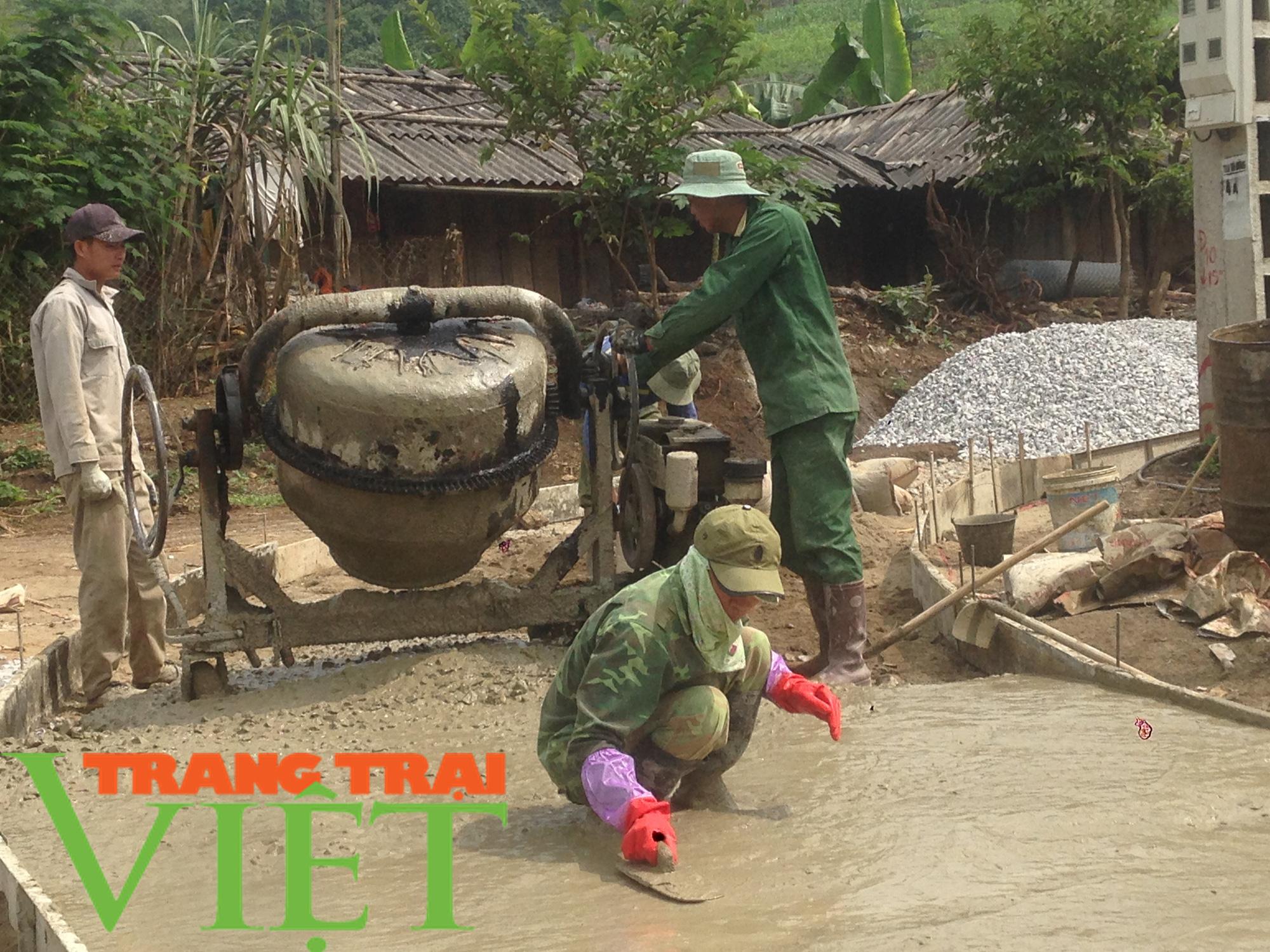 Hội Nông dân Mai Sơn: Huy động hội viên góp công, góp sức xây dựng nông thôn mới - Ảnh 5.