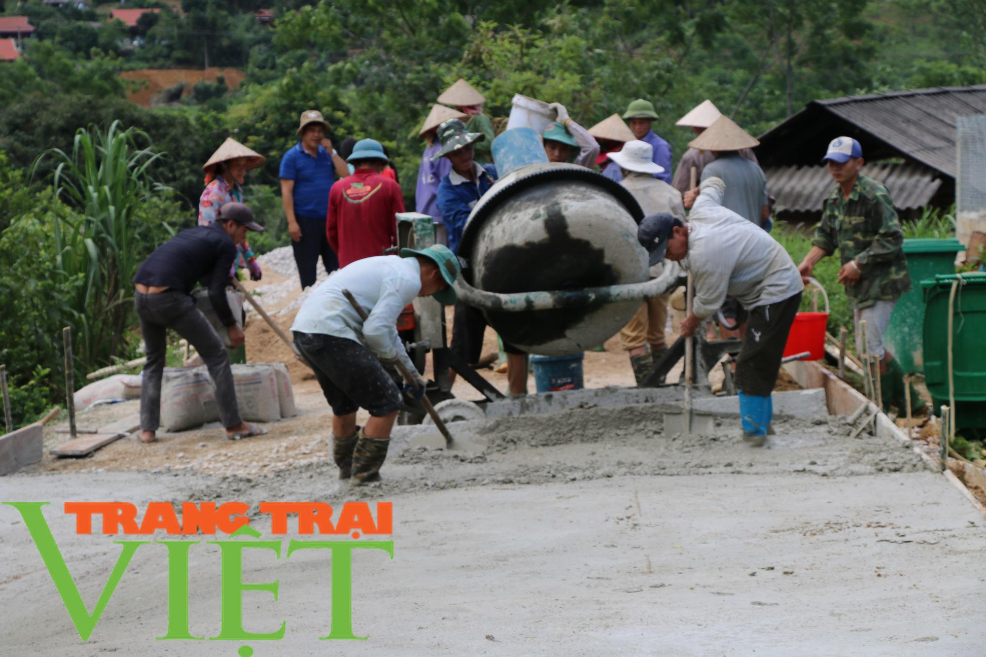 Hội Nông dân Mai Sơn: Huy động hội viên góp công, góp sức xây dựng nông thôn mới - Ảnh 4.