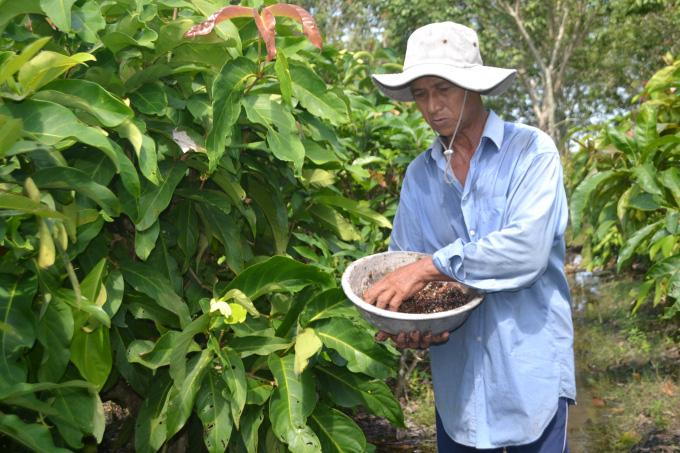 Tây Ninh: Trồng những cây rau rừng tốt um tùm, rộng mênh mông, nông dân ở đây chăm nhàn mà thành tỷ phú, triệu phú - Ảnh 1.