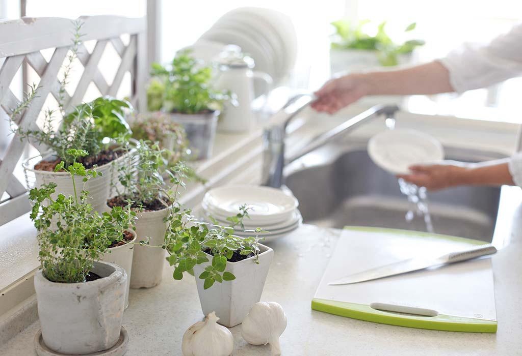 """Nếu khu bếp đặt loại cây phong thủy này, gia chủ sẽ lên như """"diều gặp gió"""" - Ảnh 2."""