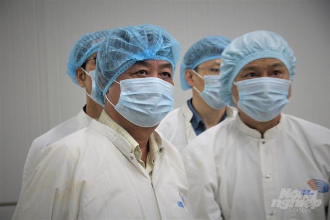 Tìm thị trường tiêu thụ cho 2 loại nhuyễn thể tiềm năng nhất Việt Nam - Ảnh 2.