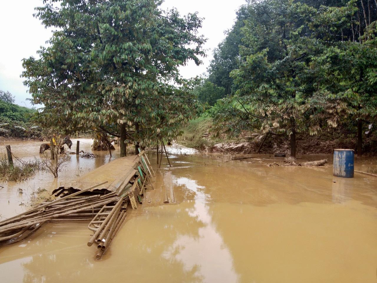 Thủy điện tích nước vô lối ở tỉnh Kon Tum: Tỉnh chỉ đạo xử phạt Công ty Tấn Phát - Ảnh 2.